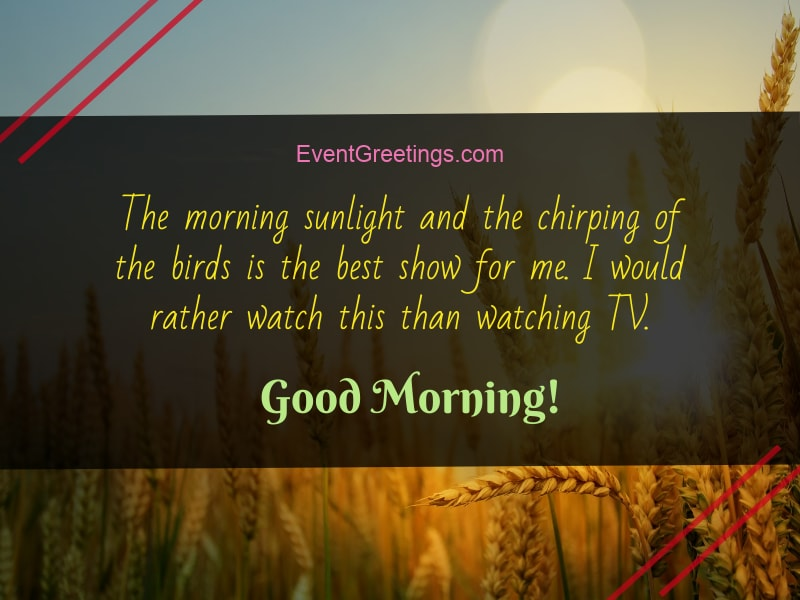 108 Attractive Good Morning Quotes to Start a New Day
