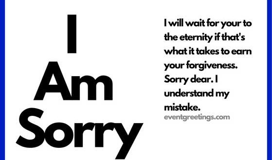 I Am Sorry Messages For Girlfriend  Apology Quotes