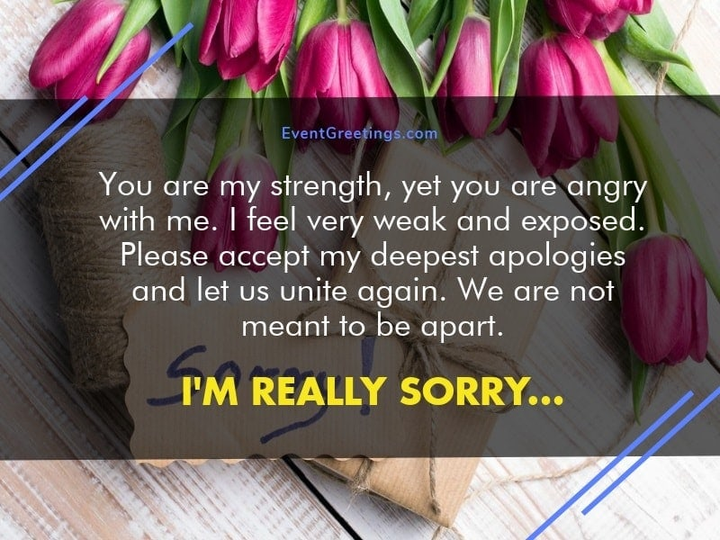 Best apology flowers for girlfriend