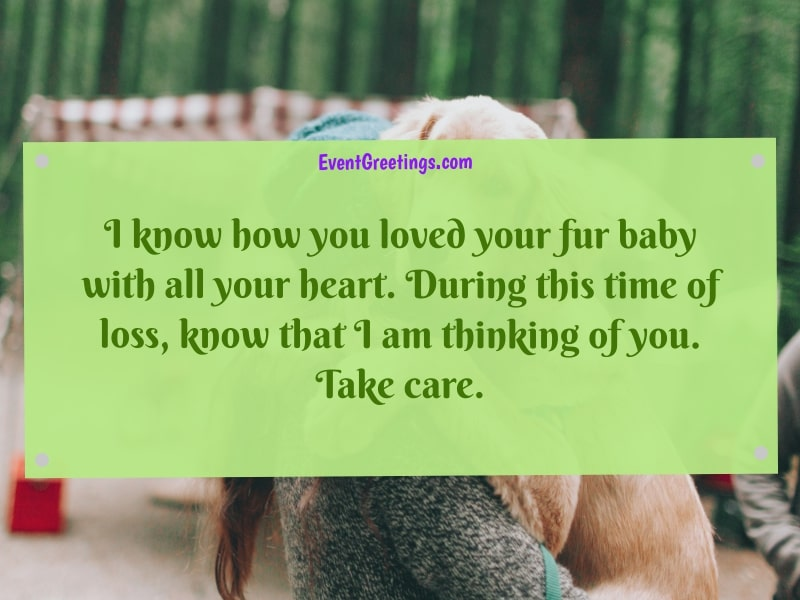 Condolences Quotes for Loss of Pet